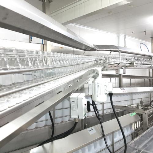 Bottling Line Conveyors
